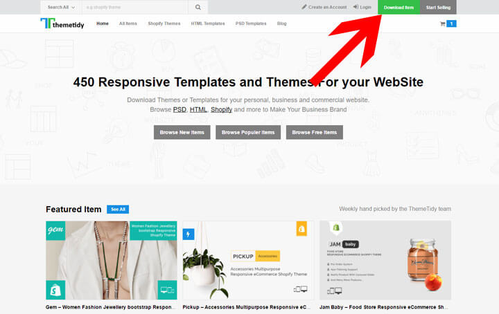 How to install a Shopify Theme?